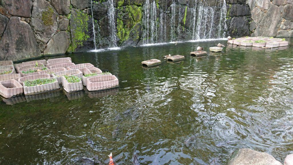 せせらぎ緑地公園の滝