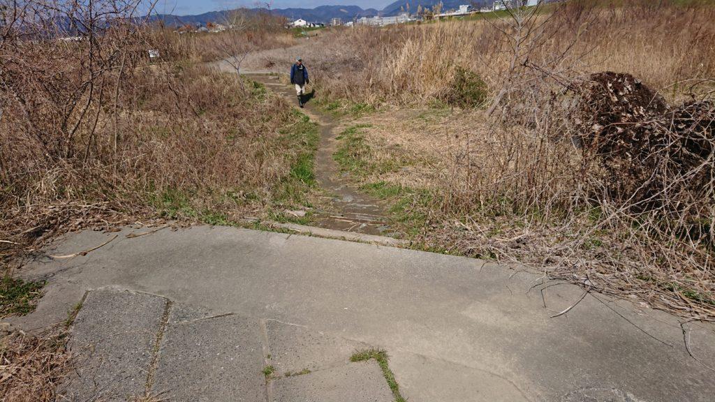 津之江公園の散歩道