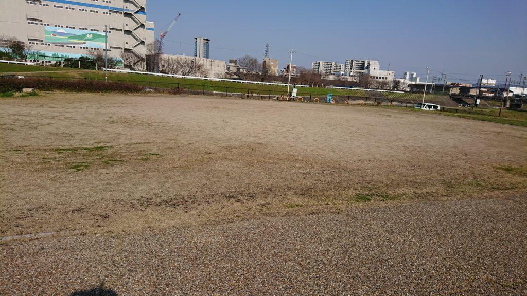 清水池公園 広場