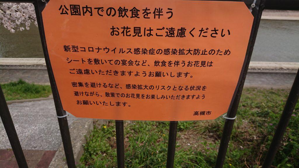 芥川の桜堤公園のお花見