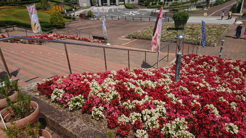 神戸フルーツフラワーパークの入り口の花壇