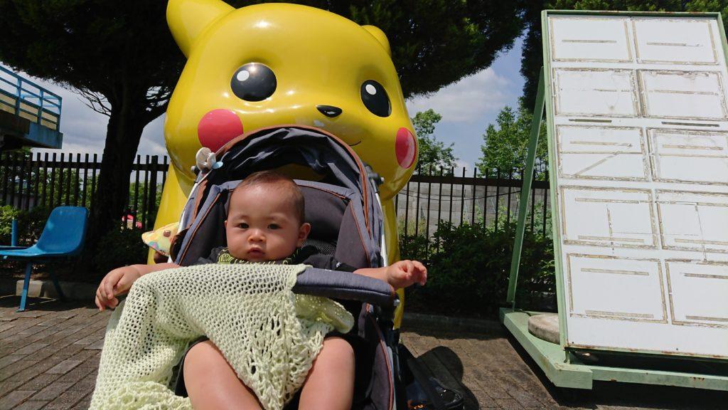 神戸フルーツフラワーパークのピカチュウ